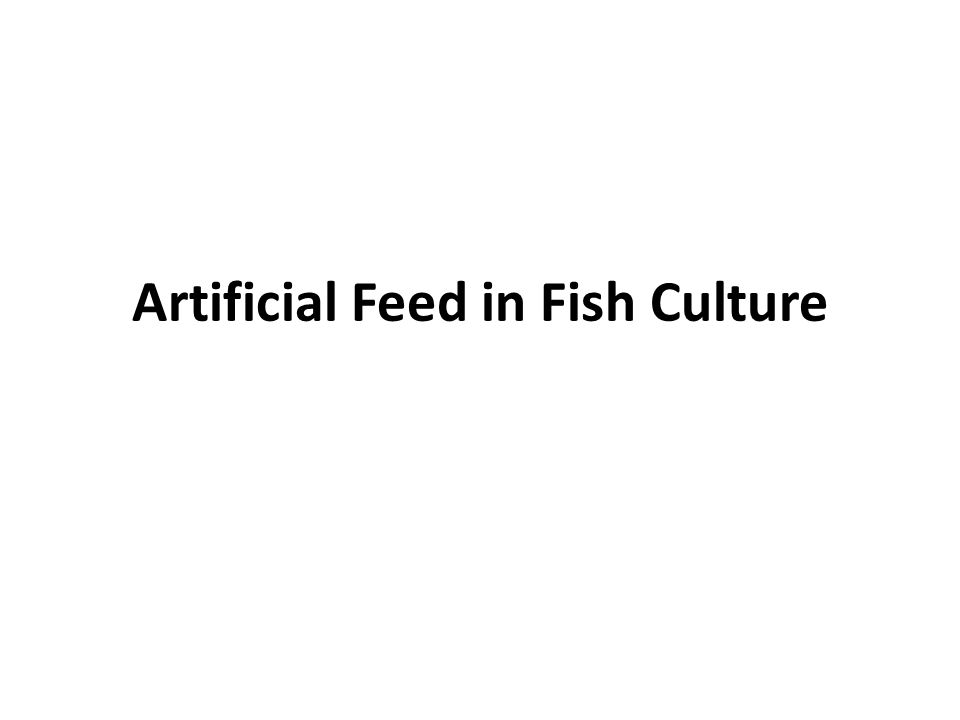 Artificial Feed in Fish Culture