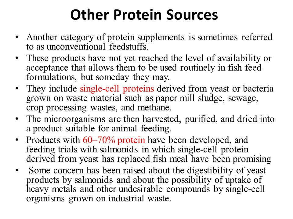 Other Protein Sources Another category of protein supplements is sometimes referred to as unconventional feedstuffs.