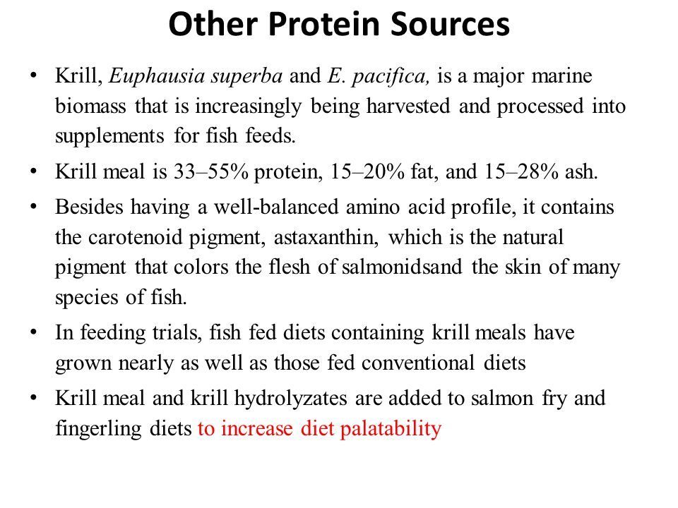 Other Protein Sources