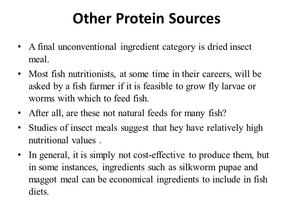 Other Protein Sources A final unconventional ingredient category is dried insect meal.