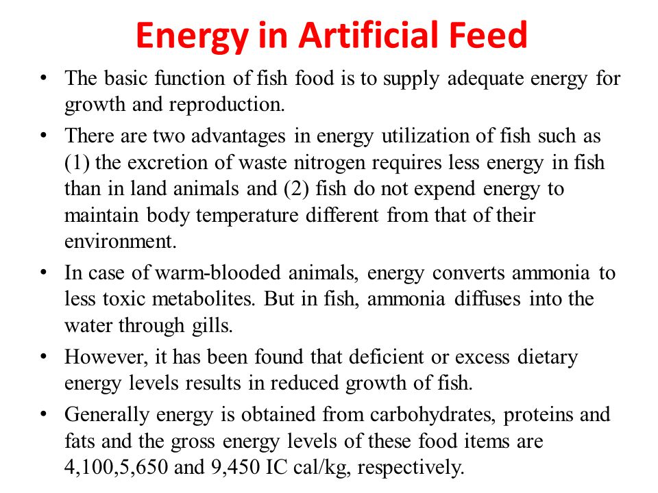 Energy in Artificial Feed