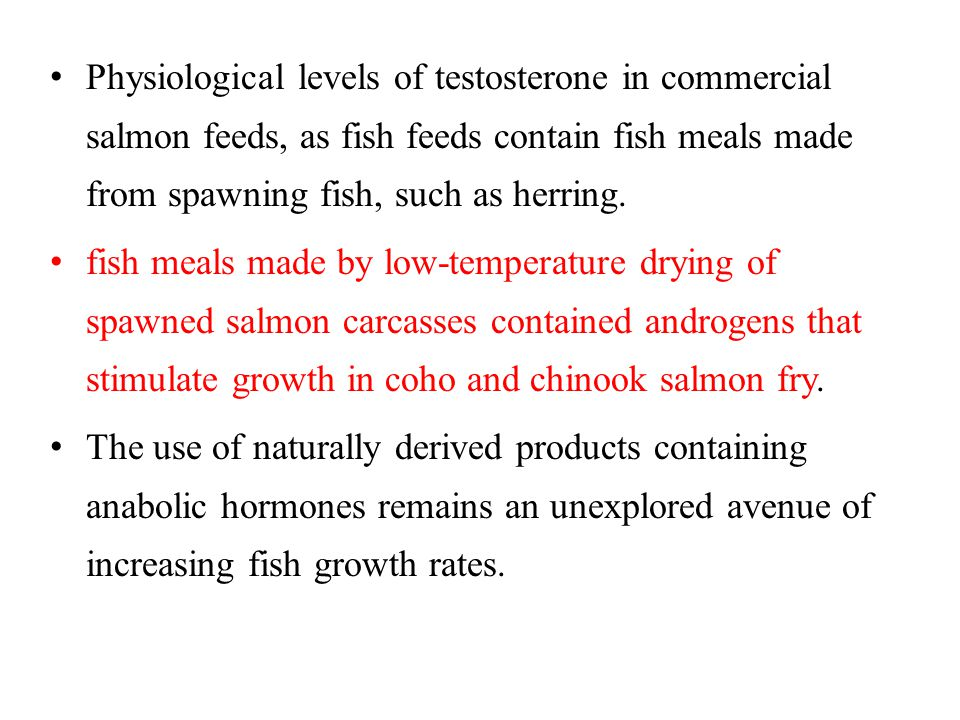 Physiological levels of testosterone in commercial salmon feeds, as fish feeds contain fish meals made from spawning fish, such as herring.