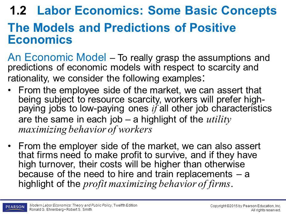 basic concepts of labour market economics essay Paper prepared for cpb-roa conference on flexibility of the labour market, den   prior to the financial crisis there was much focus on the concept of flexicurity   economy, but whether it is associated with large social costs, and whether it.