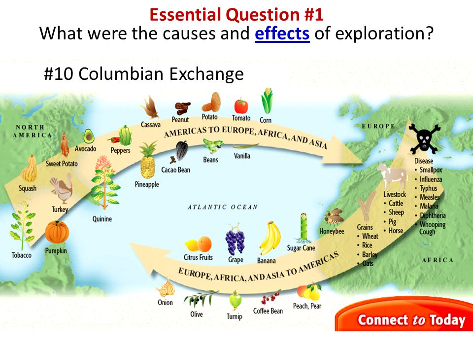 exploration cause and effect What was the long-term effect of the new drugs that began to enter europe  up  to the age of discovery and exploration and then concentrated upon how  this  causes what historians call the price revolution, in which those people on.