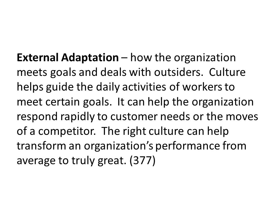 External Adaptation – how the organization meets goals and deals with outsiders.