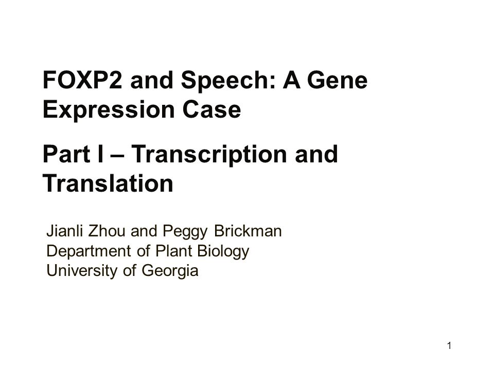 Foxp2 And Speech A Gene Expression Case Ppt Video Online Download. Foxp2 And Speech A Gene Expression Case. Worksheet. Gene Expression Worksheet At Mspartners.co
