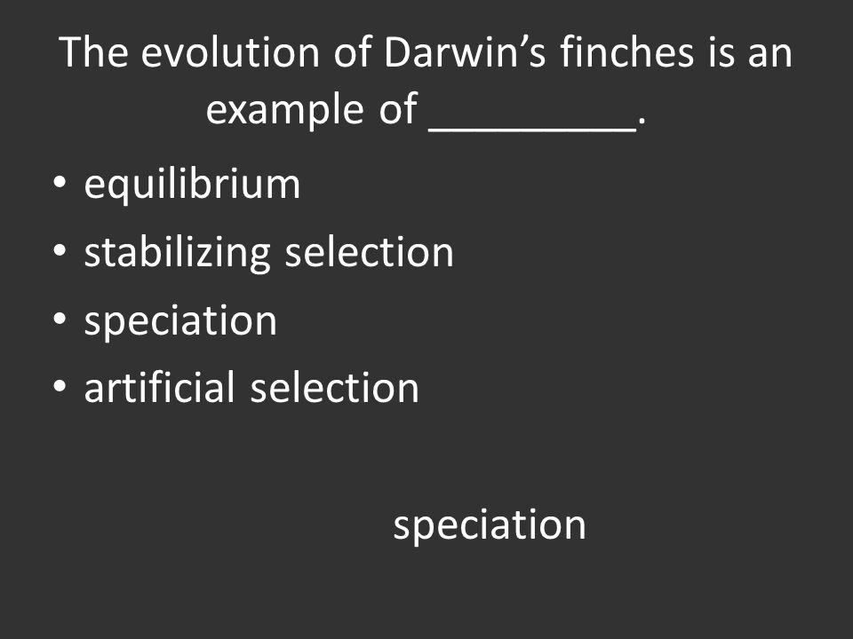 The evolution of Darwin's finches is an example of _________.