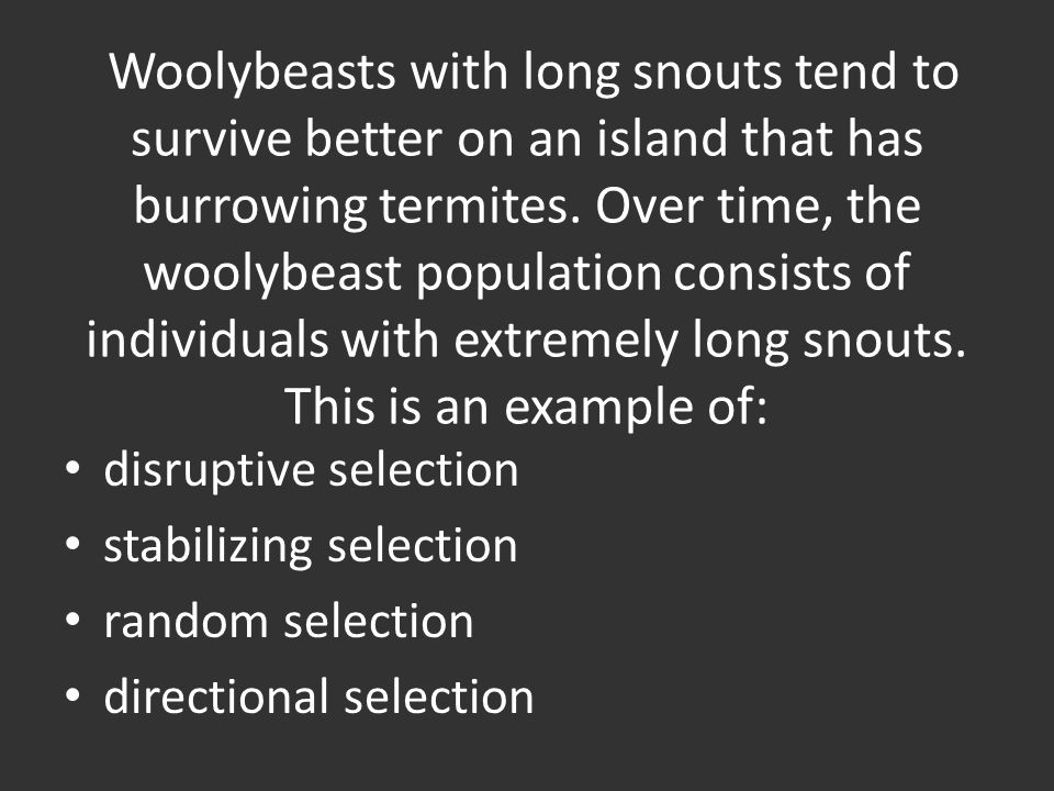 Woolybeasts with long snouts tend to survive better on an island that has burrowing termites. Over time, the woolybeast population consists of individuals with extremely long snouts. This is an example of: