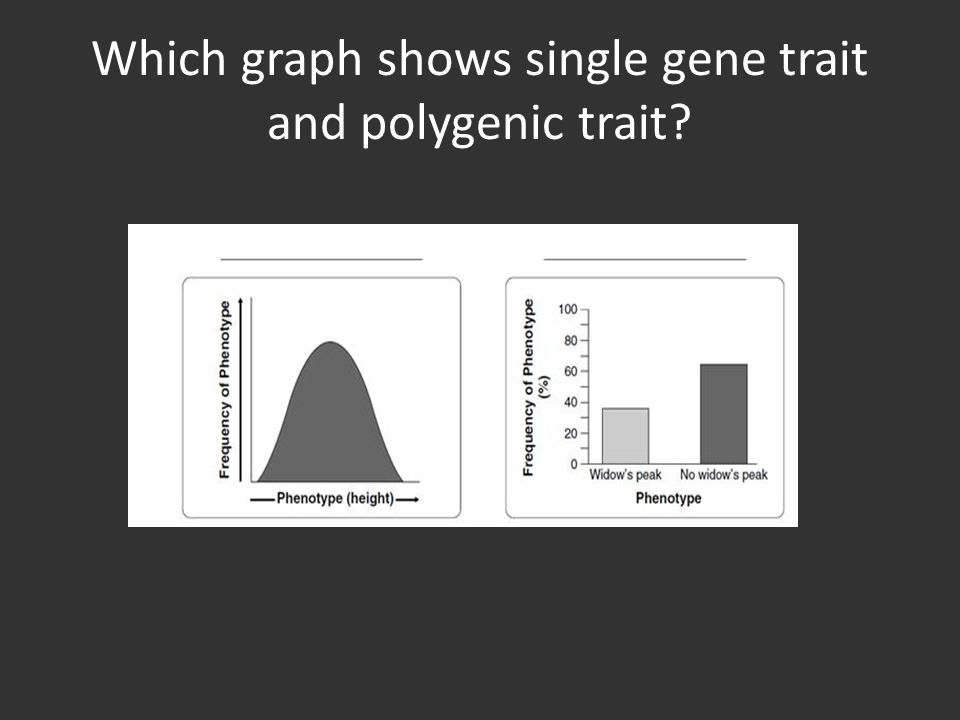 Which graph shows single gene trait and polygenic trait