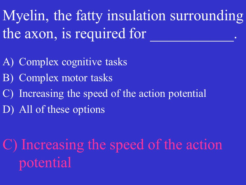 C) Increasing the speed of the action potential