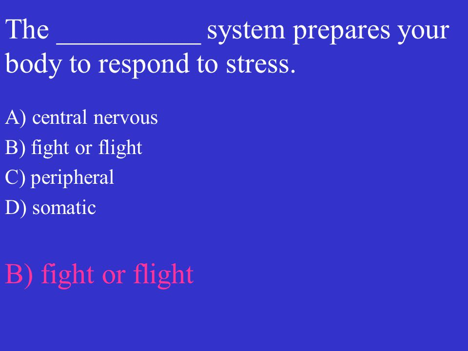 The __________ system prepares your body to respond to stress.