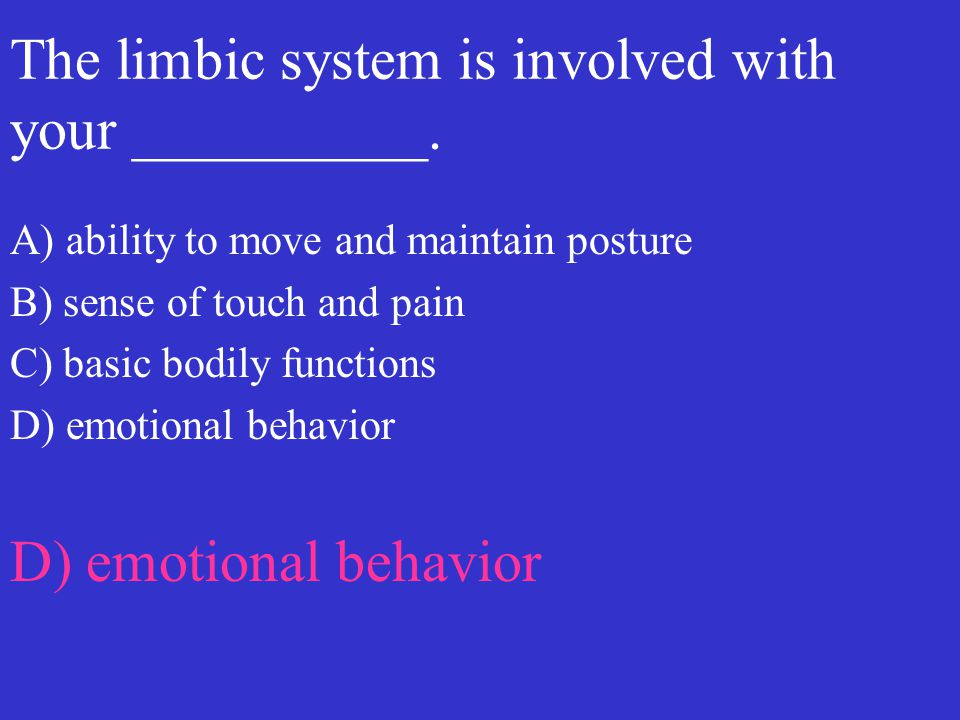 The limbic system is involved with your __________.