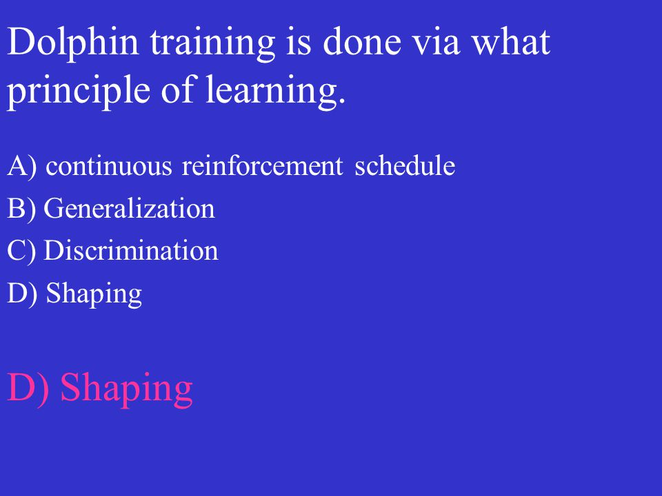 Dolphin training is done via what principle of learning.