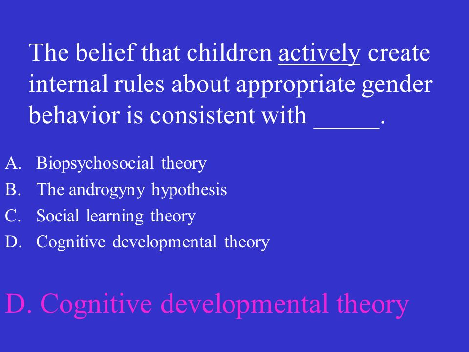 D. Cognitive developmental theory