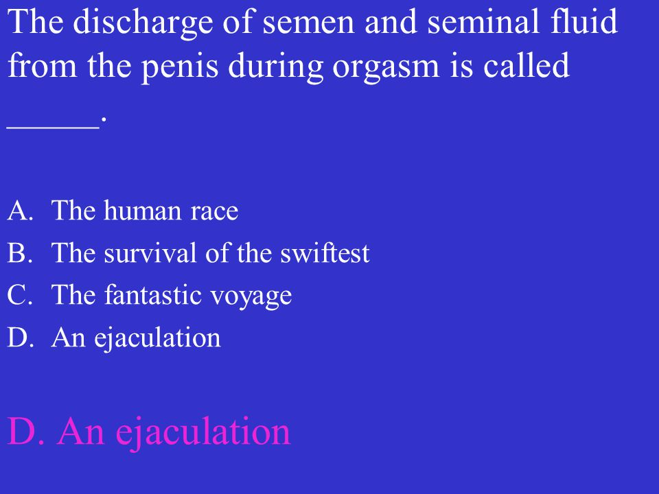 The discharge of semen and seminal fluid from the penis during orgasm is called _____.