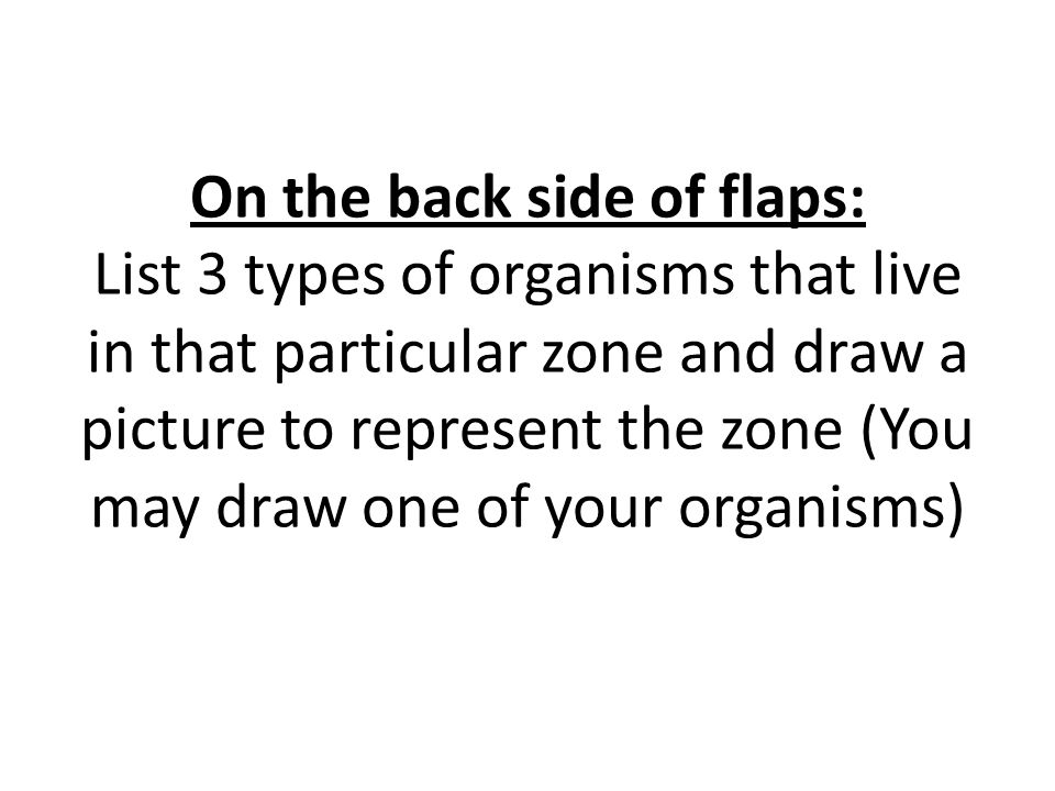 On the back side of flaps: List 3 types of organisms that live in that particular zone and draw a picture to represent the zone (You may draw one of your organisms)