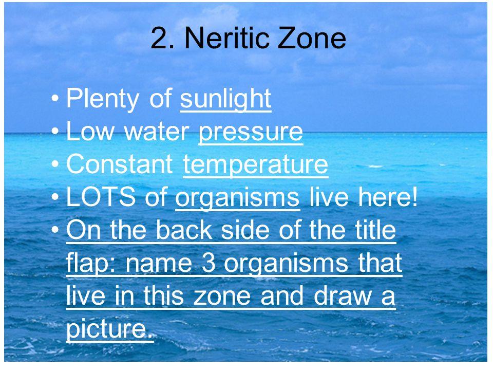 2. Neritic Zone Plenty of sunlight Low water pressure