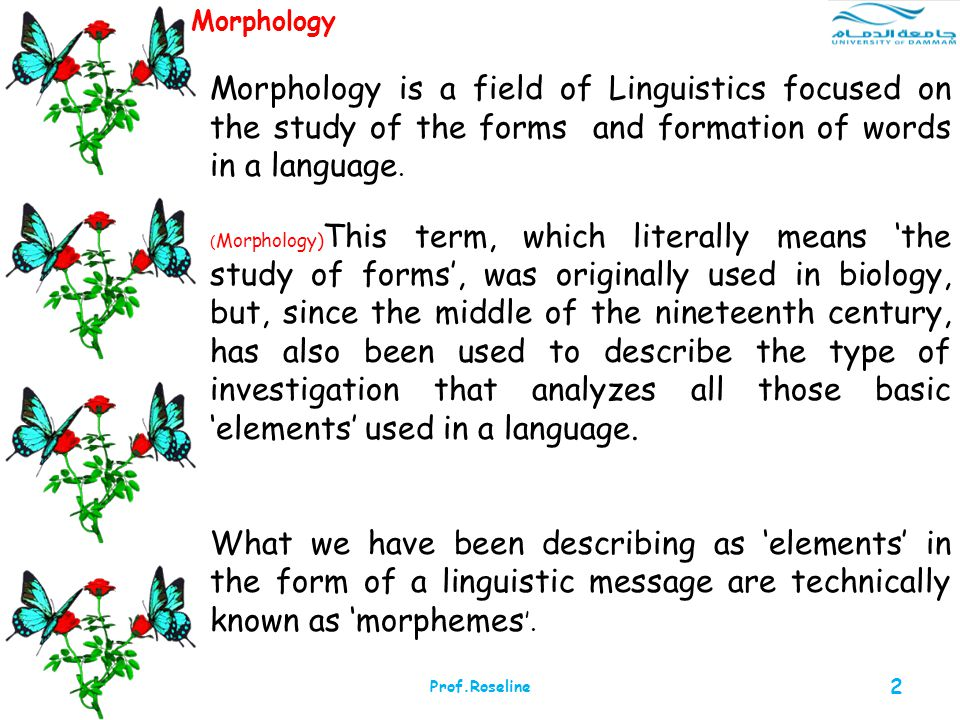 Morphology Morphology is a field of Linguistics focused on the study of the forms and formation of words in a language.