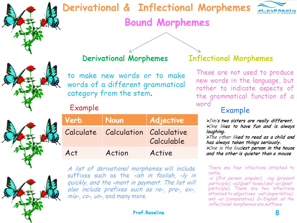 different types of morphemes Morpheme, syllable, lexeme, grapheme, phoneme note that morphemes are different a syllable may have different meaning when used as different types of.