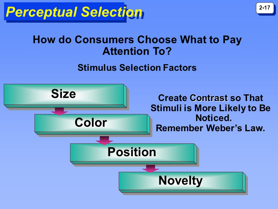 Perceptual Selection Size Color Position Novelty