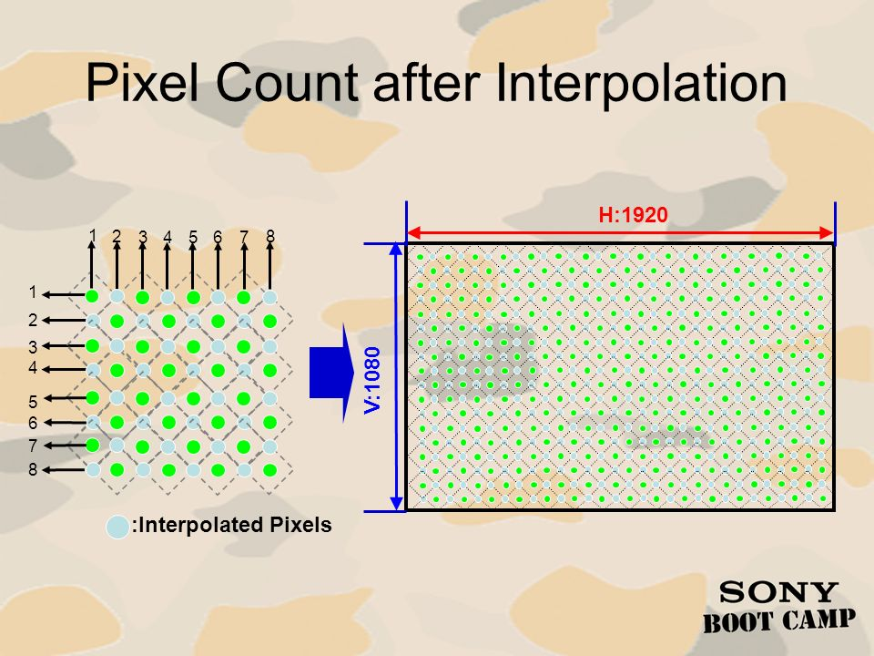 Pixel Count after Interpolation
