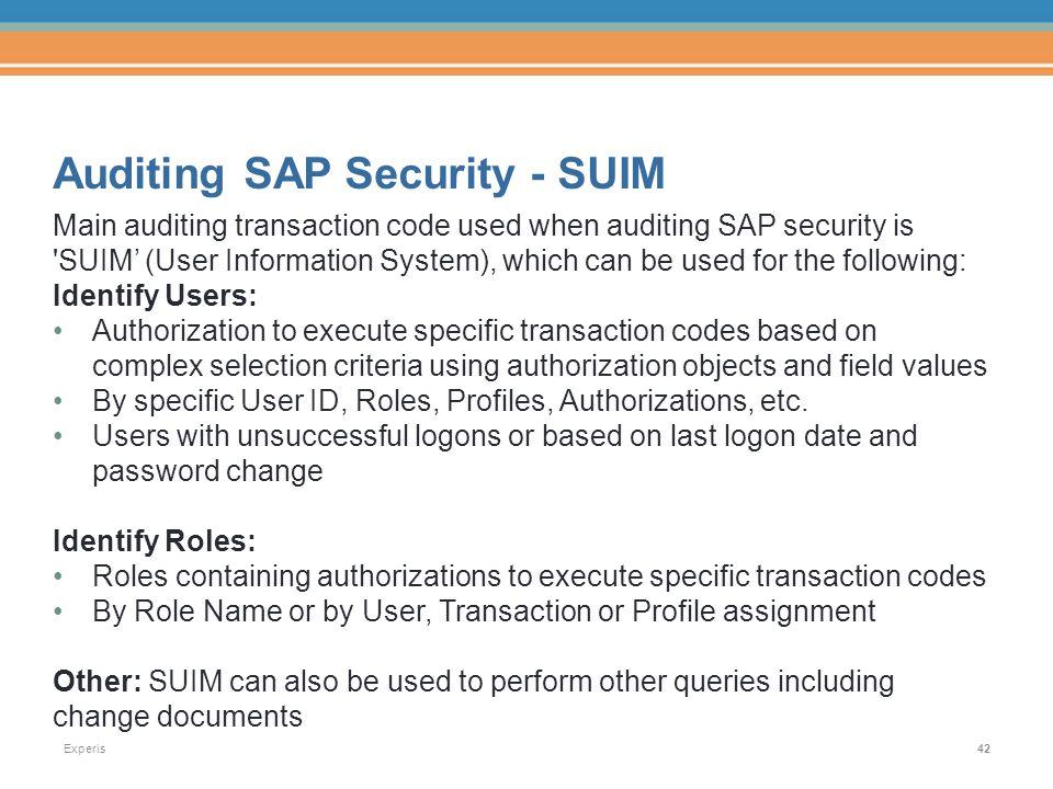 suim in sap security pdf