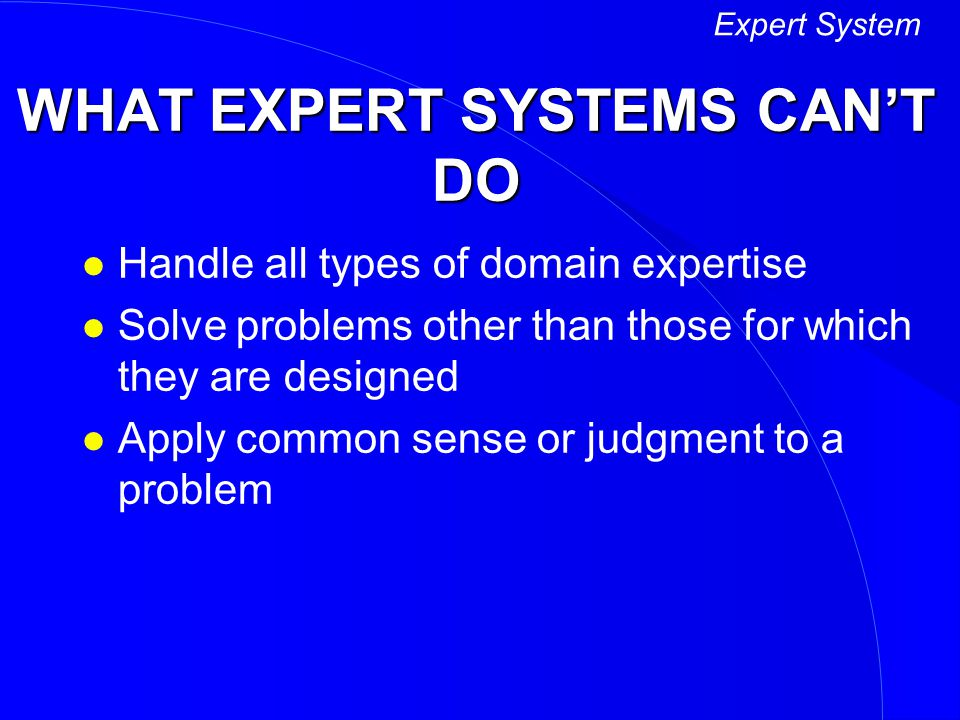 WHAT EXPERT SYSTEMS CAN'T DO