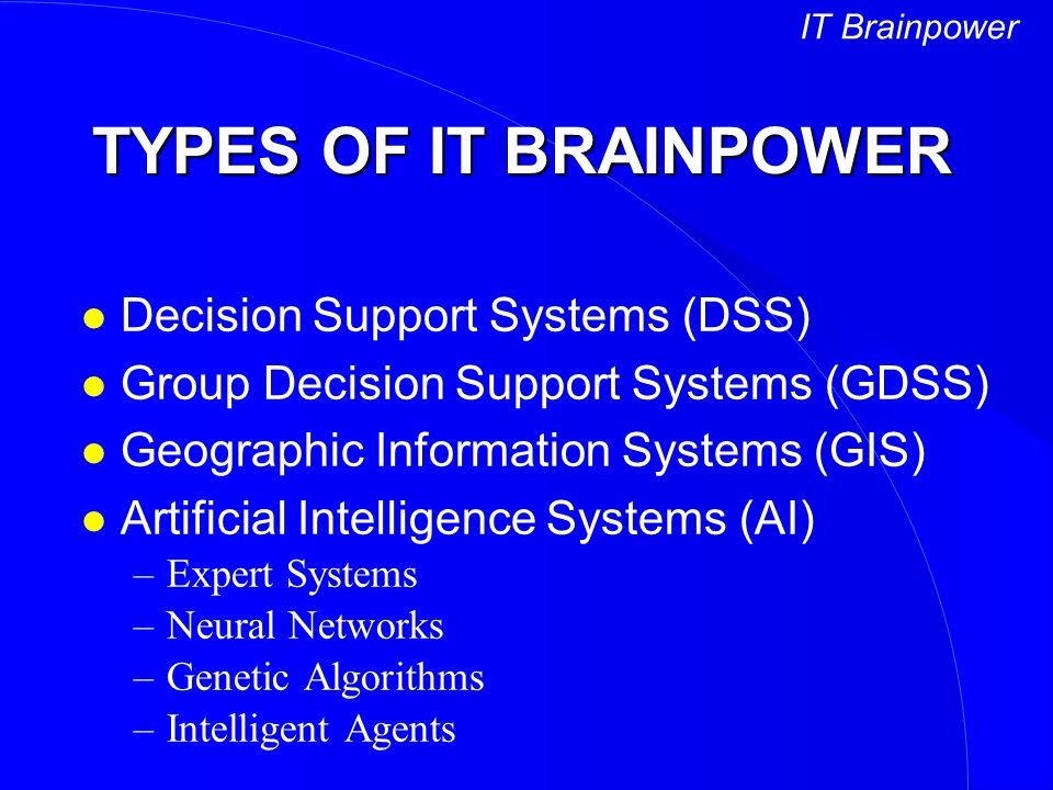 TYPES OF IT BRAINPOWER Decision Support Systems (DSS)