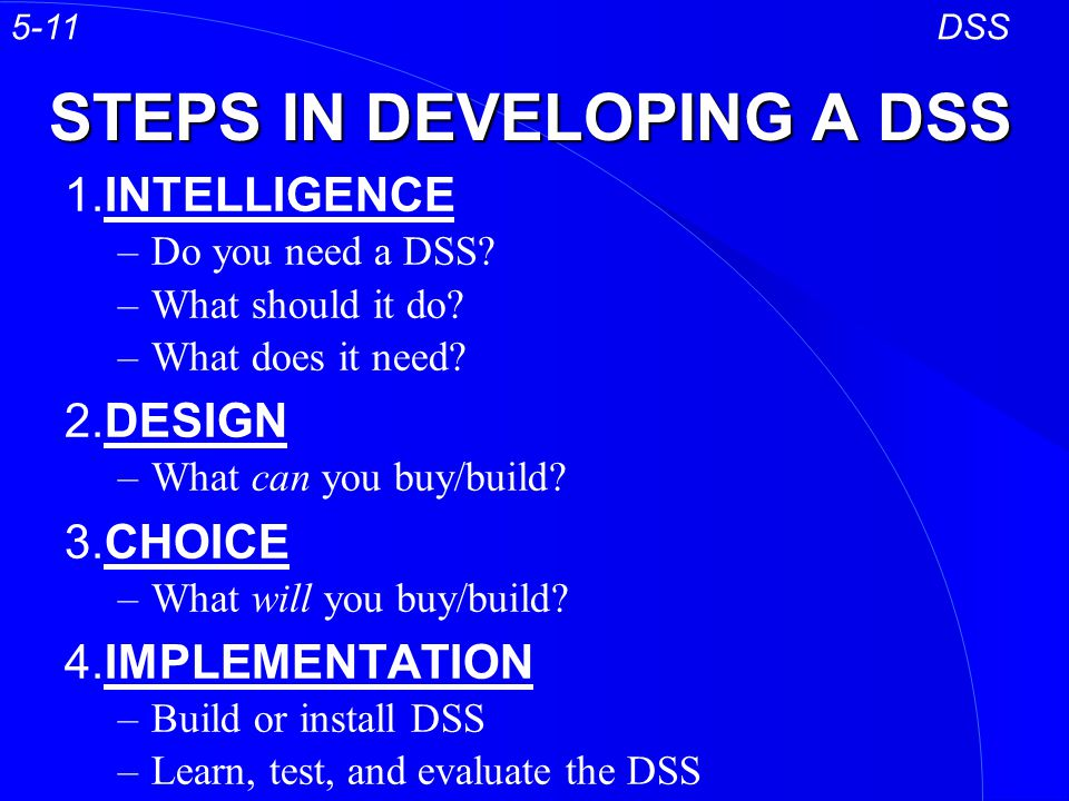 STEPS IN DEVELOPING A DSS