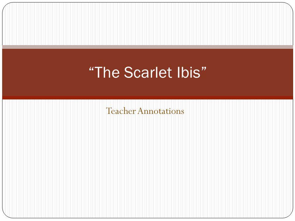 the scarlet ibis bias theme