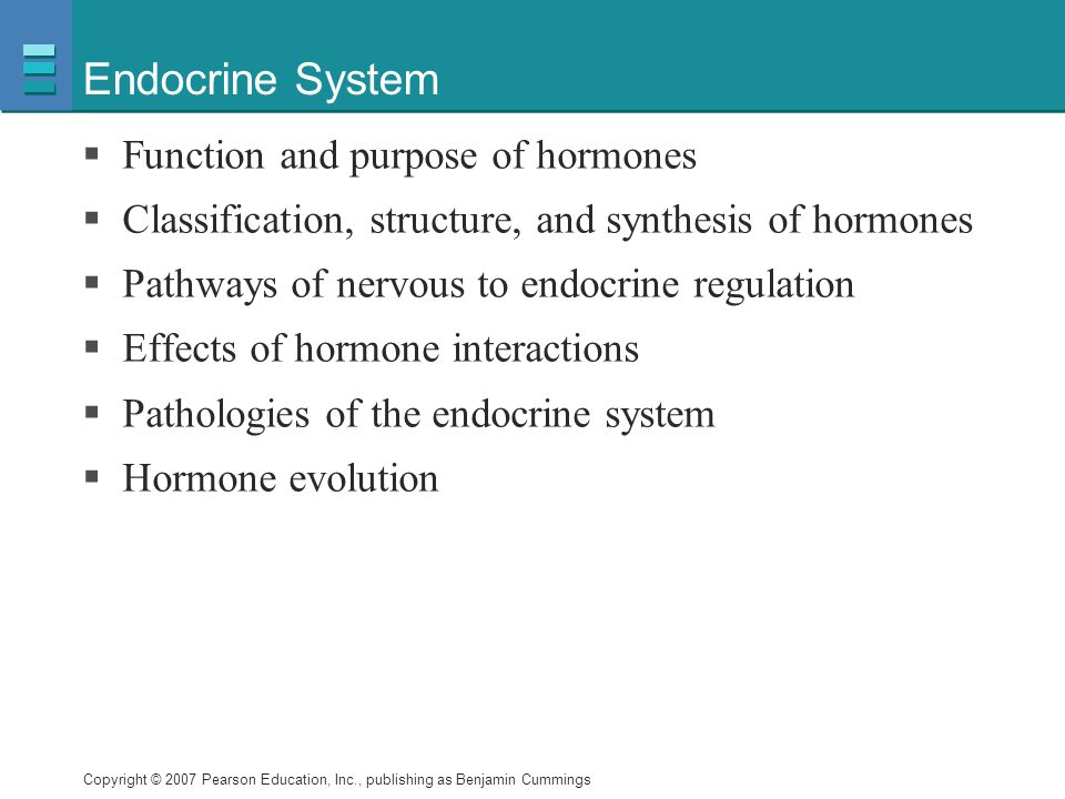 Endocrine System Function And Purpose Of Hormones Ppt Video Online