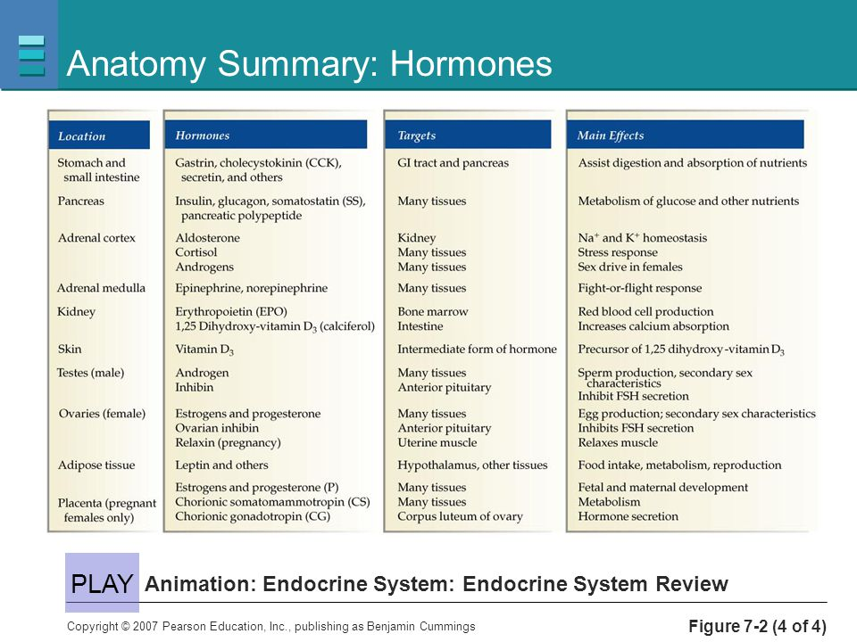 hormones and the endocrine system The endocrine system is an intricate collection of hormone-producing glands scattered throughout the body as an interrelated group, these glands influence almost every cell, organ, and function of our bodies, helping to control mood, metabolism, growth, tissue function, and sexual development some .