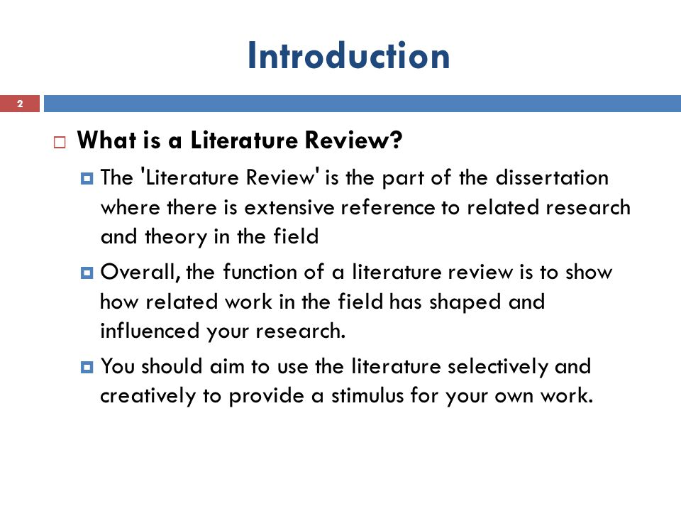 What Is A Literature Review In A Research Project The Best Essay
