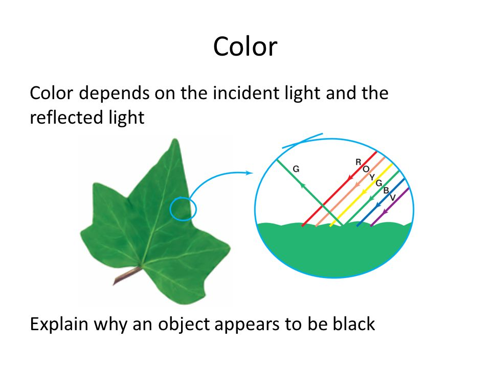 Color Color depends on the incident light and the reflected light Explain why an object appears to be black