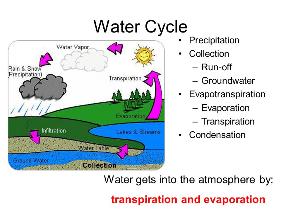 Transpiration And Evaporation 4 Water Cycle Collection 5 Temperature A Measure