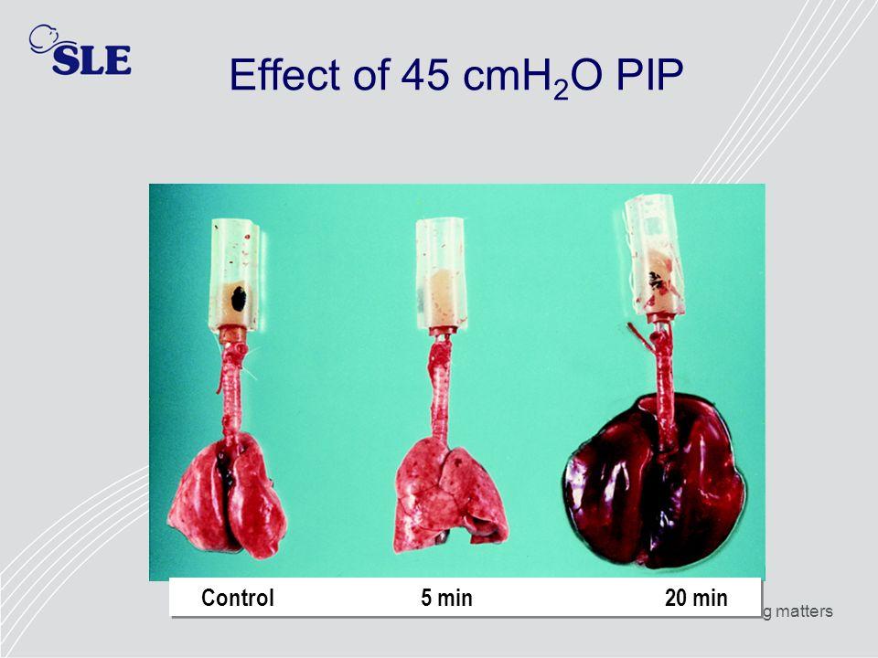 Effect of 45 cmH2O PIP Control 5 min 20 min.