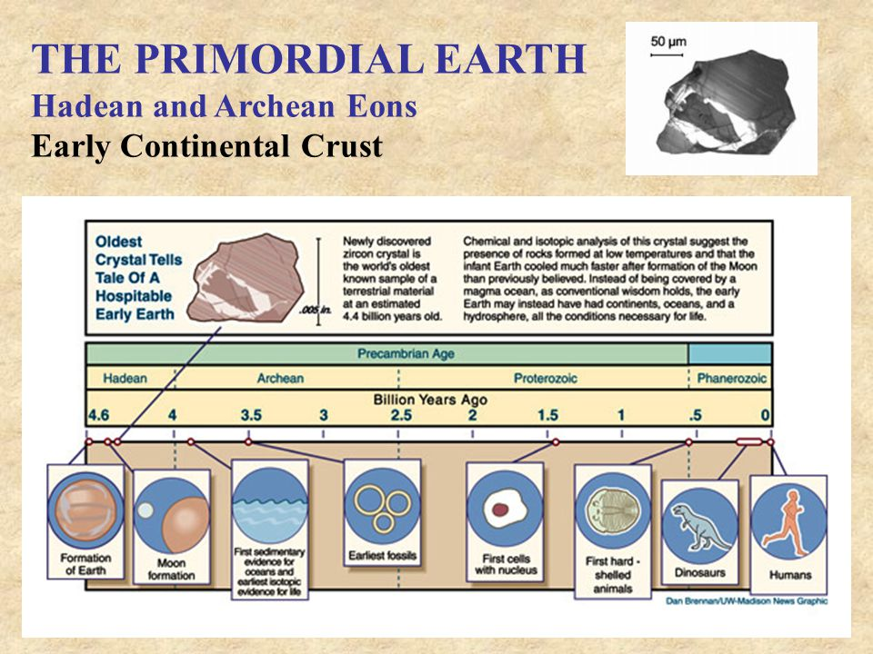 THE PRIMORDIAL EARTH Hadean and Archean Eons Early Continental Crust