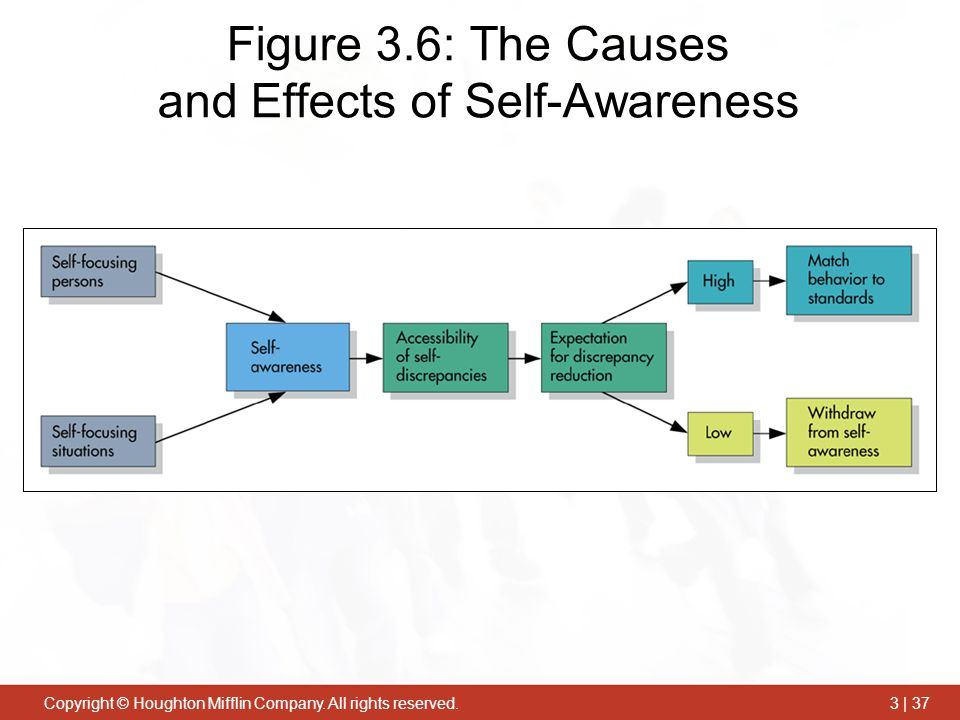 cause and effects of self destructive behavior Many depressed people tell me they want to stop their self-destructive behavior, because it is causing their depression the self-destructive behaviors they are referring to range from addiction, to cutting, burning, or hurting themselves most often though, they are referencing having made choices that they.