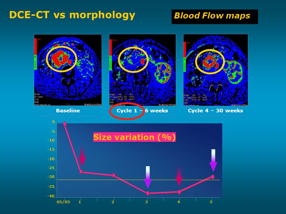 DCE-CT vs morphology Blood Flow maps Size variation (%) Baseline