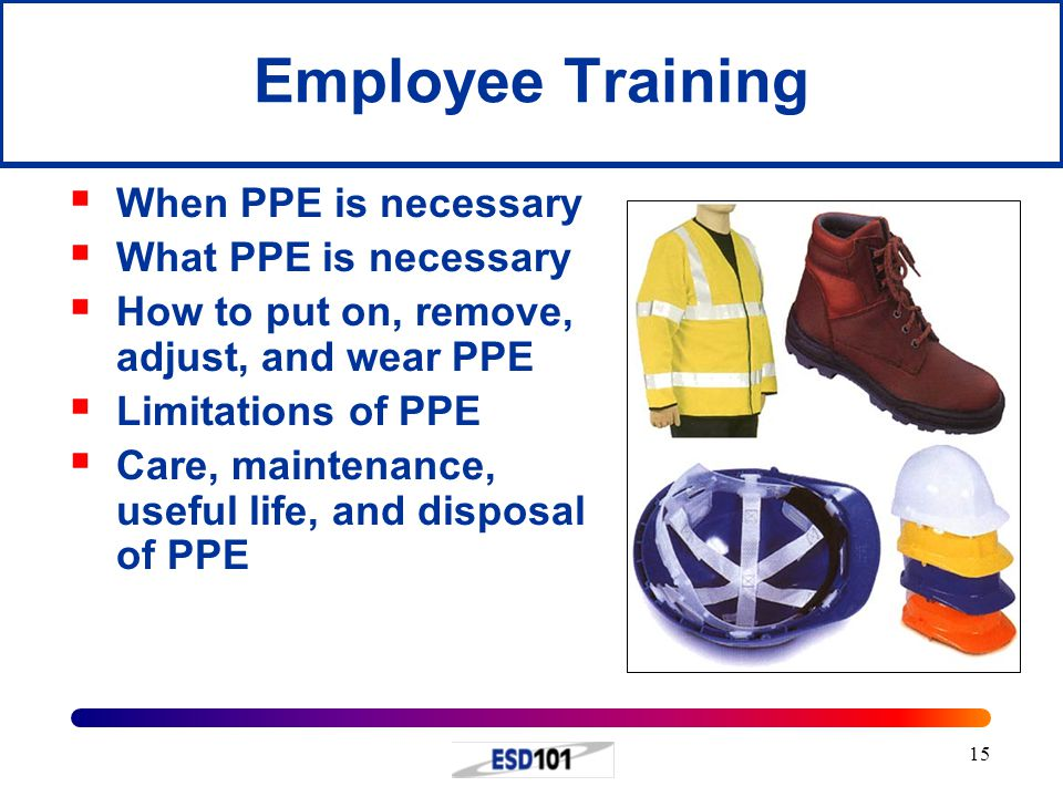 Employee Training When PPE is necessary What PPE is necessary