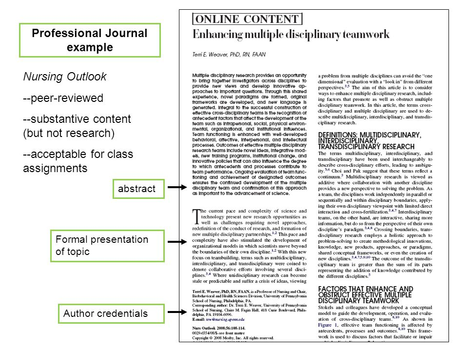 Professional Journal example