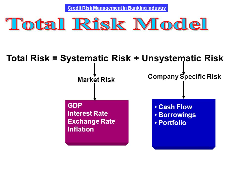 a companys systematic risk and non systematic risk Systematic risks for the financial and for the non-financial romanian companies the financial and the non financial companies' systematic risks.