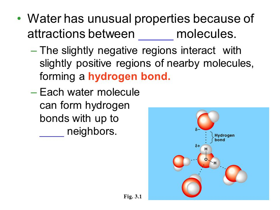 Chemical Foundations for Cells - ppt download