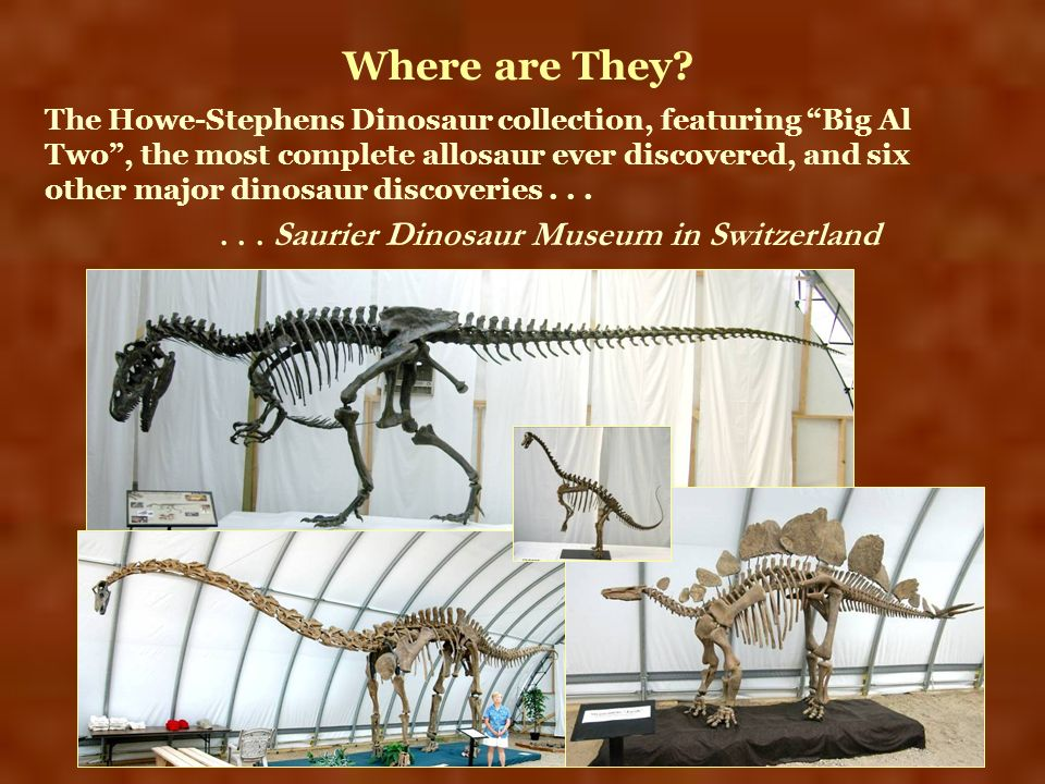 Where are They . . . Saurier Dinosaur Museum in Switzerland