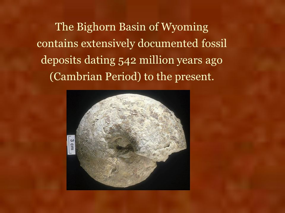 The Bighorn Basin of Wyoming contains extensively documented fossil deposits dating 542 million years ago (Cambrian Period) to the present.