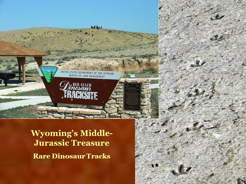 Wyoming's Middle-Jurassic Treasure