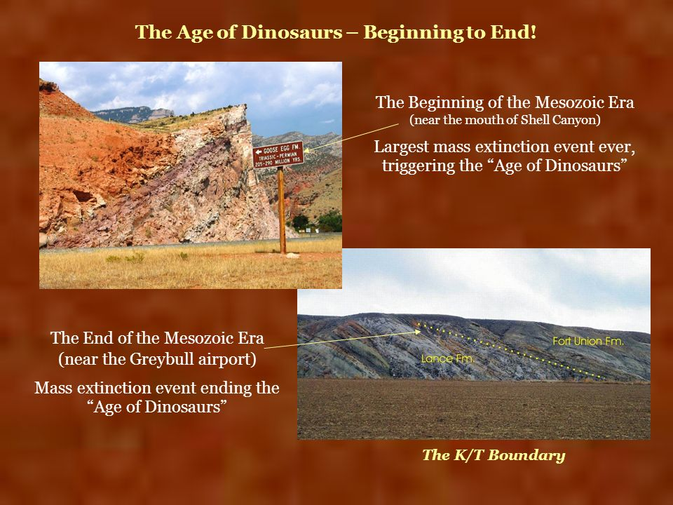 The Age of Dinosaurs – Beginning to End!