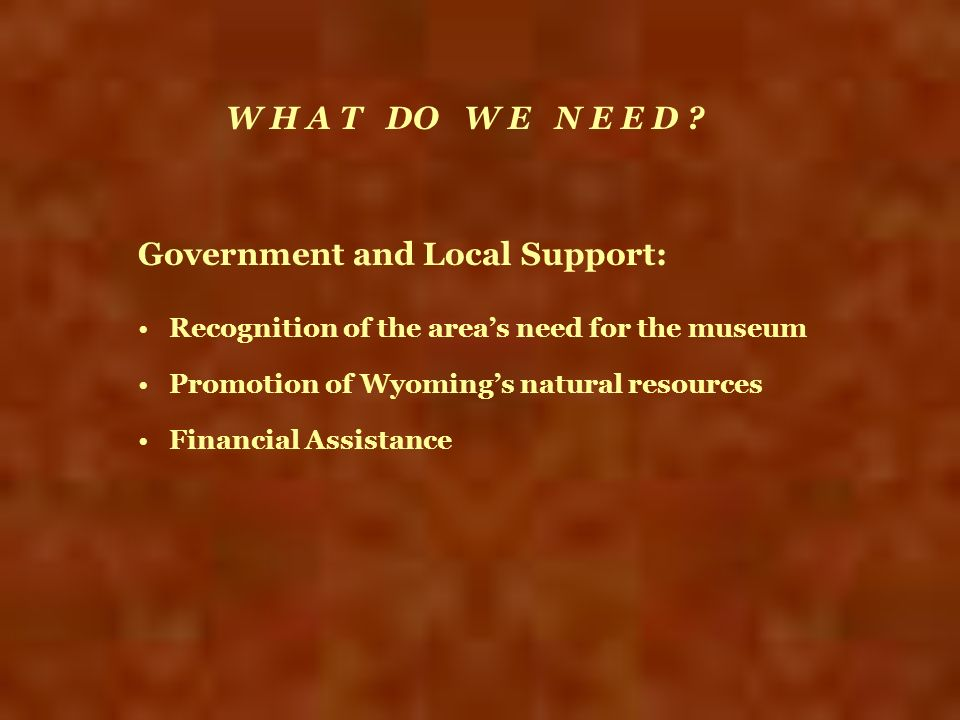 Government and Local Support: