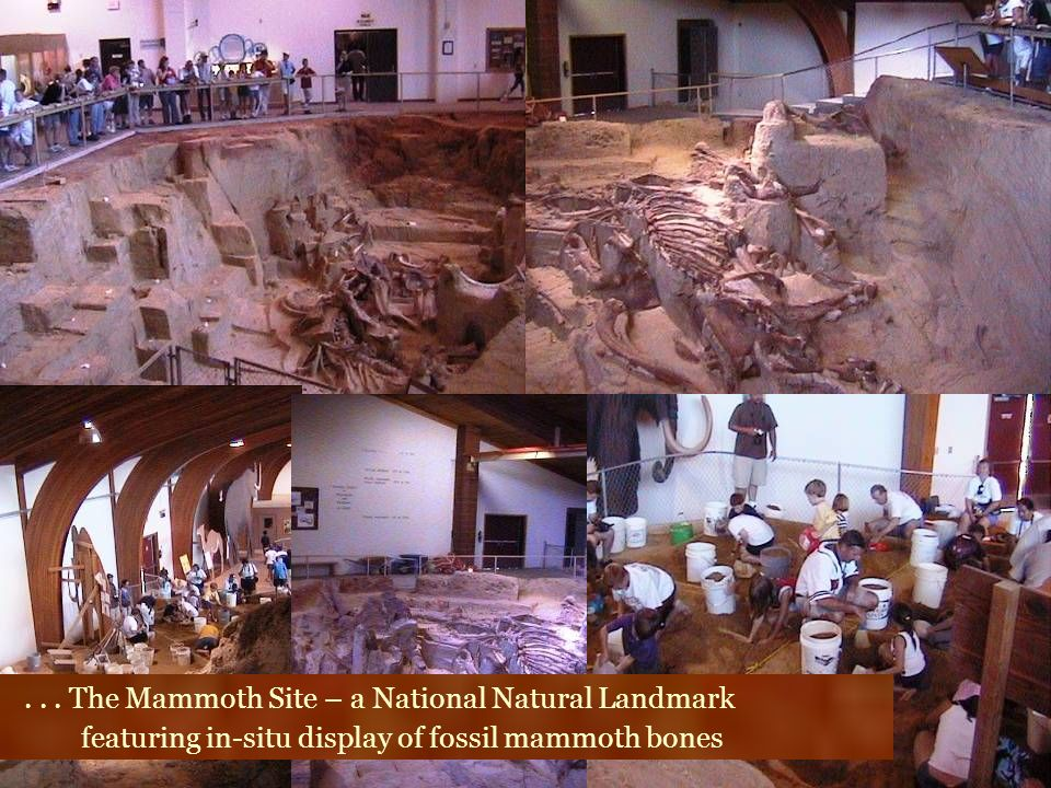 . . . The Mammoth Site – a National Natural Landmark