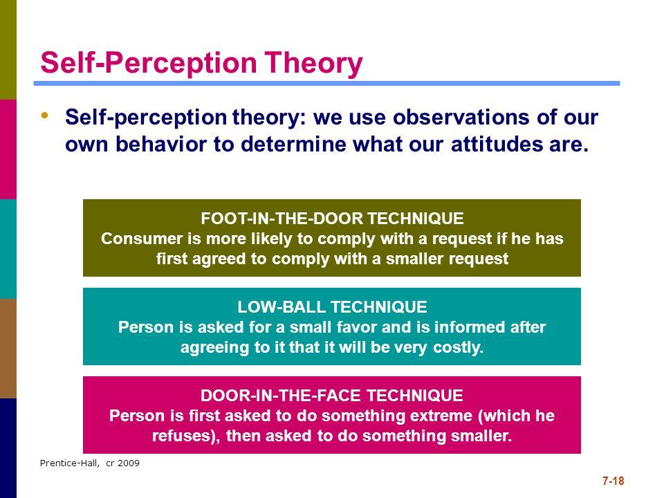 self perception theory